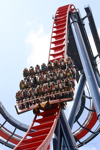 So many amazing time in orlando visiting kerry hilarious - Busch gardens tampa roller coasters ...