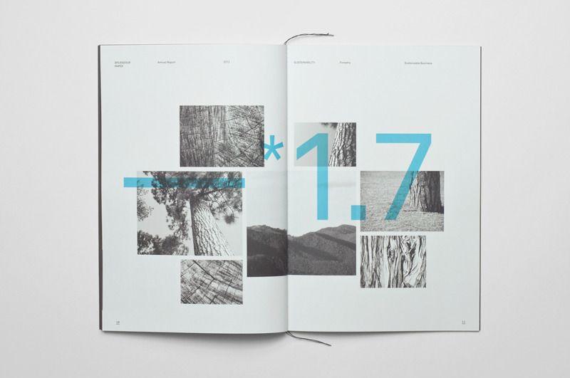 Annual Report - Tomas Sabbatucci