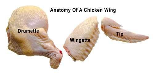 Chicken Wings Anatomy Recipes Chicken In 2018 Pinterest