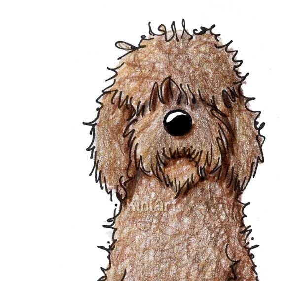 Fantastic Labradoodle Anime Adorable Dog - fb5d0981cd68b3f98fa11ec3392d1dc4  2018_532674  .jpg