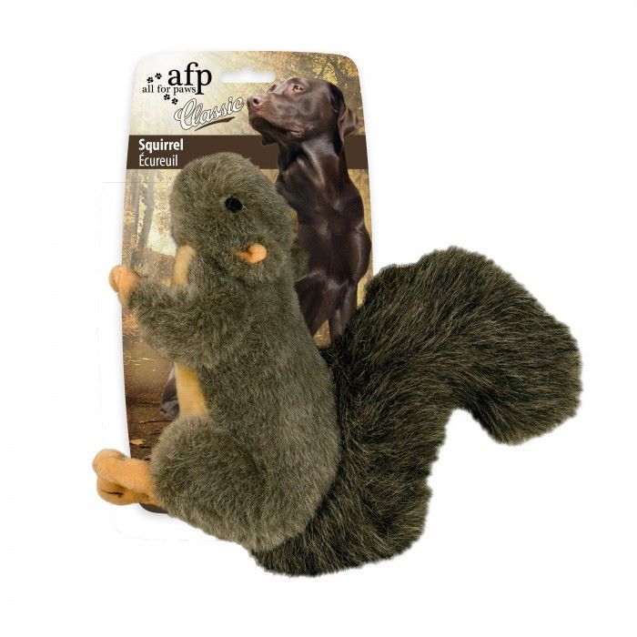 All For Paws Dog Toy Classic Squirrel Dog Toys Cat Toys Toys