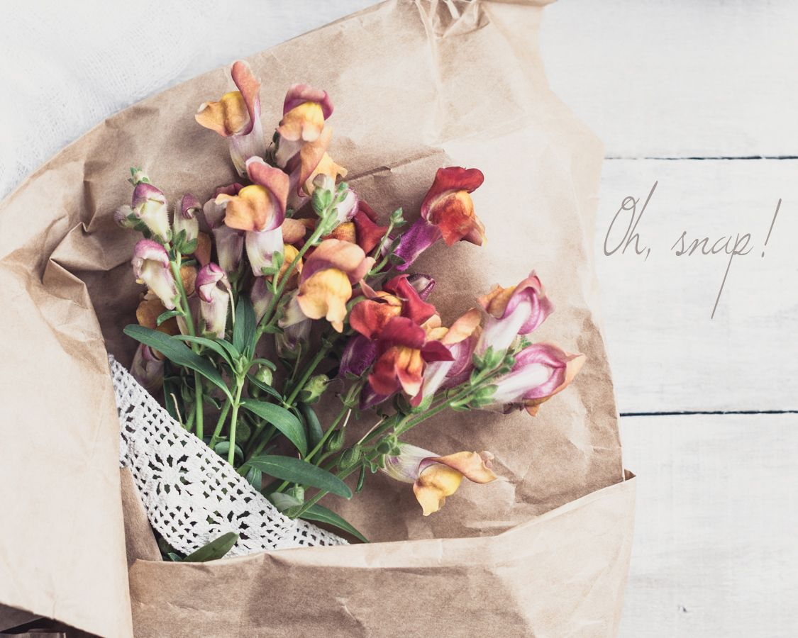 Brown paper wrapped snapdragons by Beverly Cazzell @ Lavender Bleu