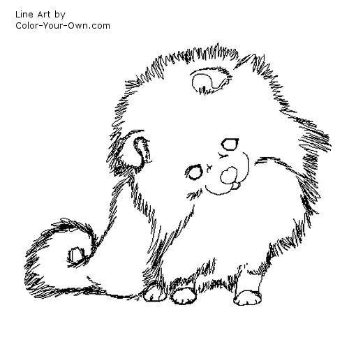 pomeranian puppy line art