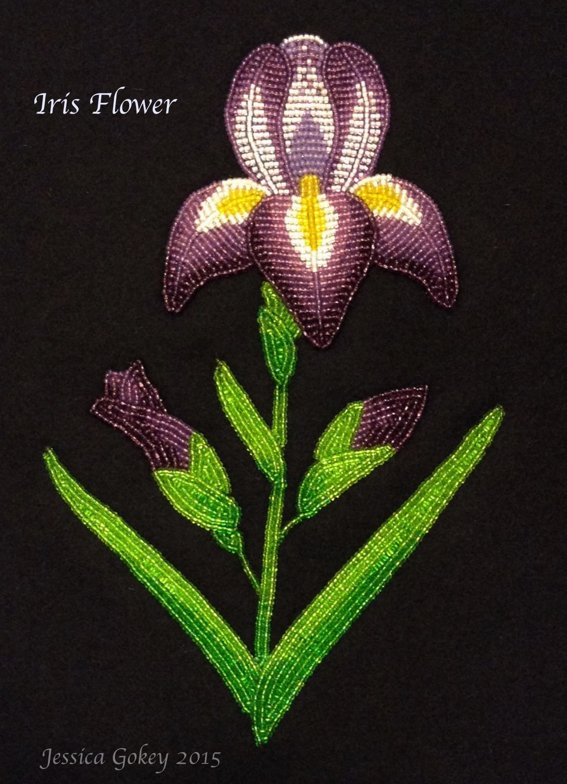 Here is an Iris Flower, its a unique version of a child's portrait. I have a good friend who has a daughter who's name is Iris and wanted to make something for their family. I am branching out into a new direction and experimenting with realistic and shading techniques. Hope You All Enjoy!