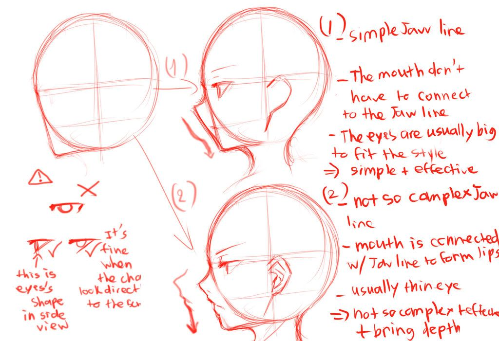 Side View Guide By Krissin On Deviantart Side View Drawing Drawing Heads Face Side View Drawing