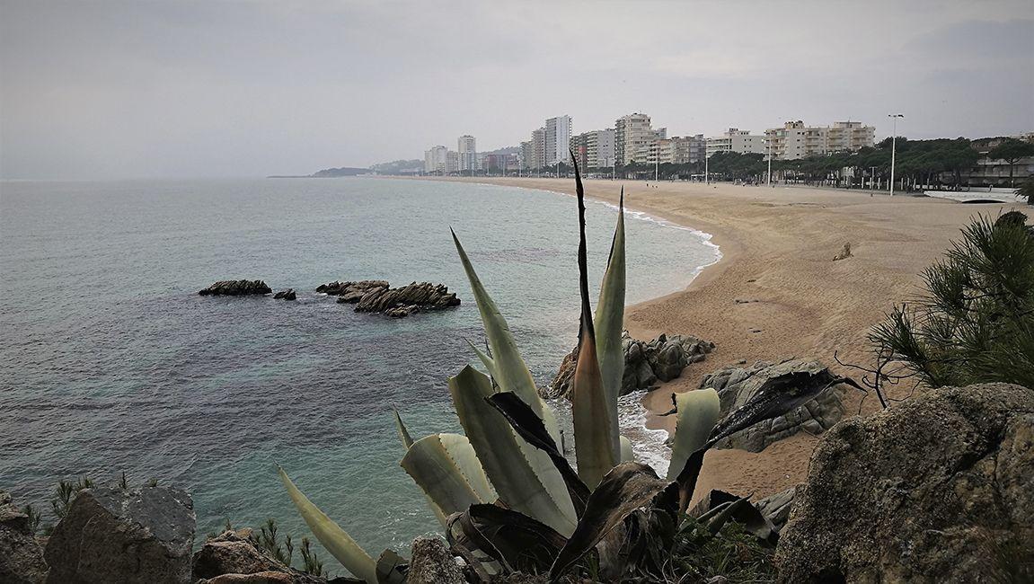 Rutas Mar Mon Cami De Ronda Platja D Aro A Sant Antoni De Calonge En 2021 Rutas Senderismo España España Lugares Turisticos Rutas