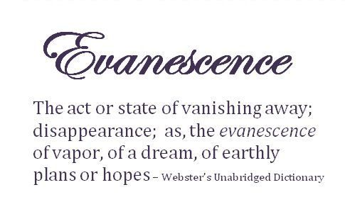 Strange+Words+and+Their+Meanings | The Definition Of U201c Evanescenceu201d Could  Only Be Found In Webster .