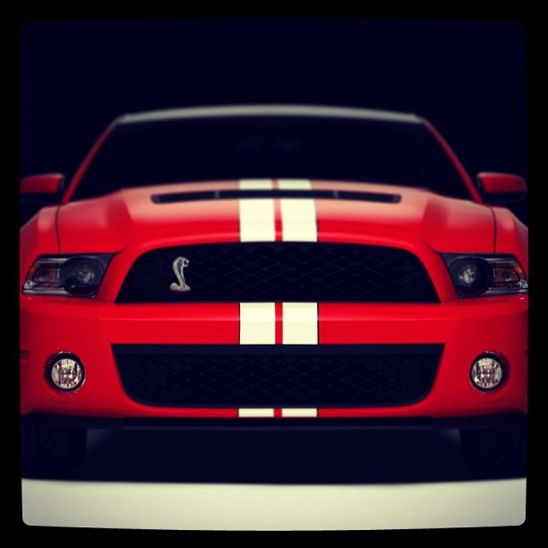 Ford Shelby GT500!