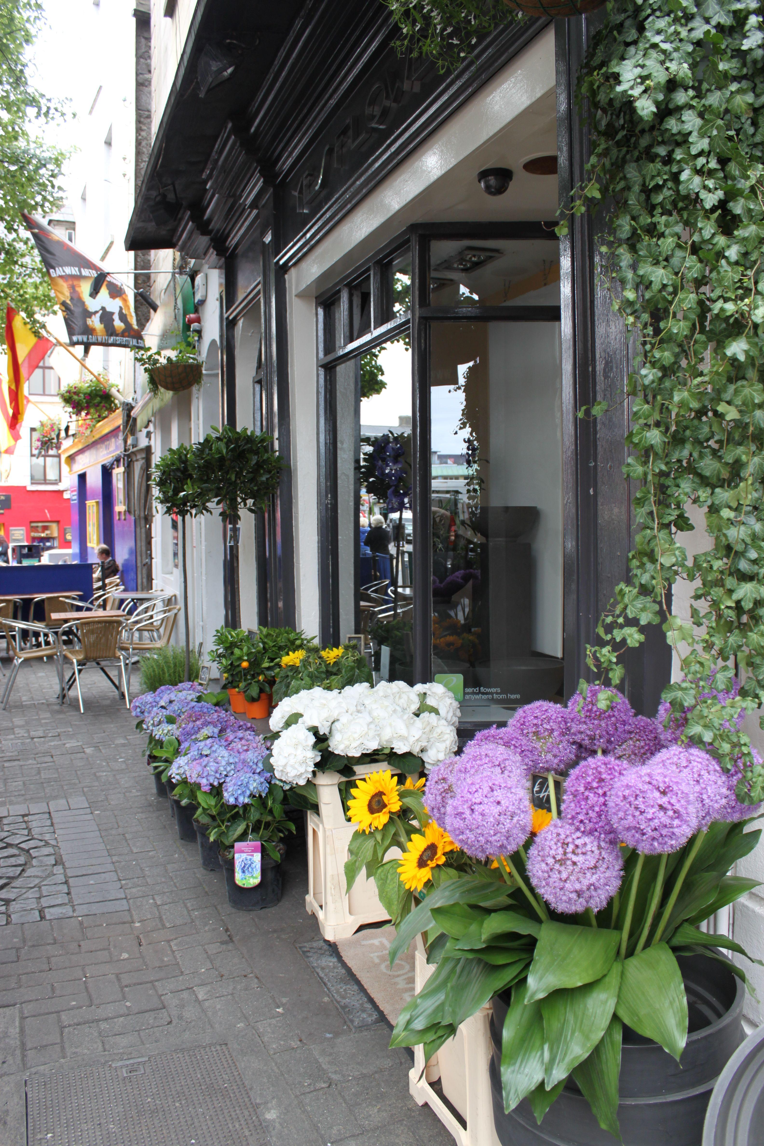 Flower shops in Galway Ireland Galway ireland, Flowers