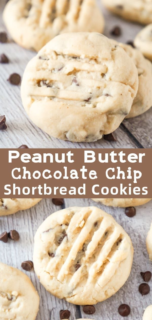 Peanut Butter Chocolate Chip Shortbread Cookies - This is Not Diet Food #peanutbuttersquares