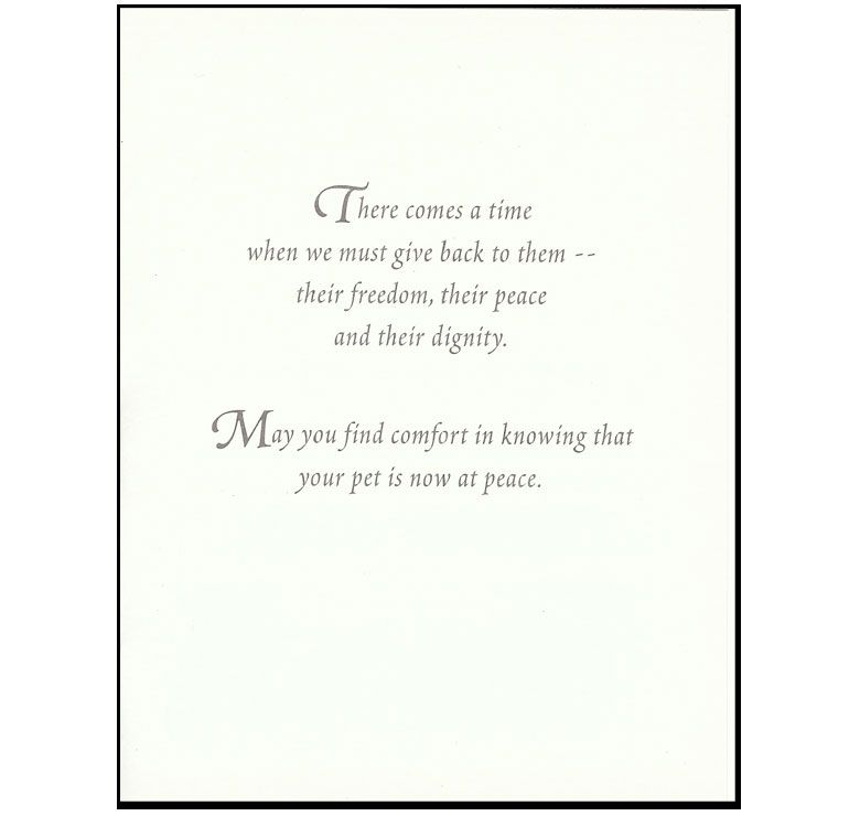 S10 Pet Sympathy Card Veterinary Wisdom Professionals Pet