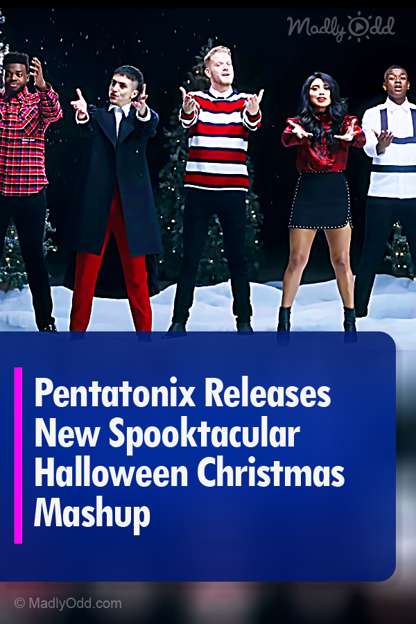 In true Pentatonix style, their music will have you awed