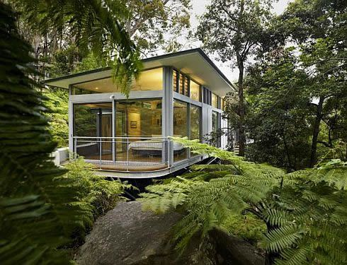 Glass Tree House Designed By Utz Sanby Architects Nestled On A Steep Slope In