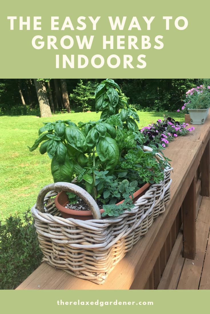 Growing Herbs Indoors Made Easy Growing Herbs Indoors 400 x 300