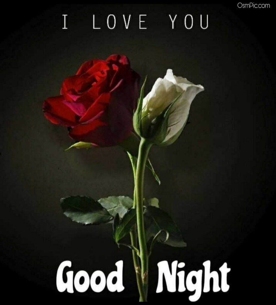 Top 100 Good Night Images For Whatsapp Free Download Hd Wallpaper Pictures Photos Of Gn Good Night Image Red Rose Love Love Wallpaper