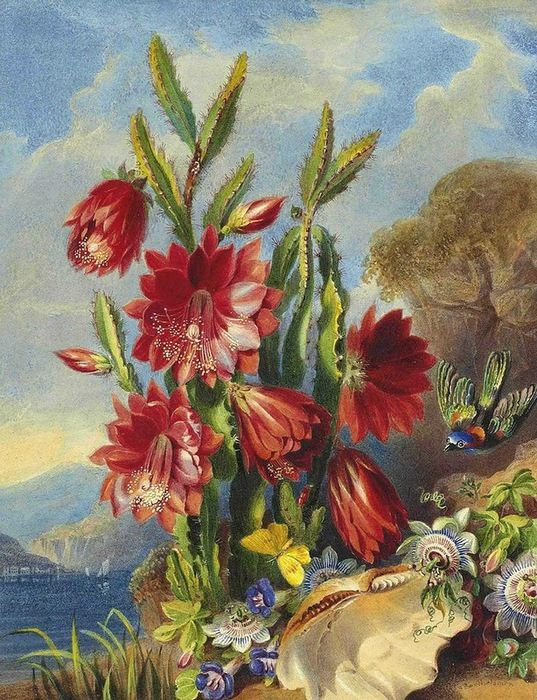 Valentine Bartholomew 1799-1879 (с изображениями ...