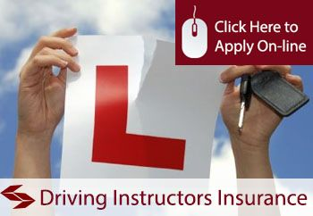 Driving Instructor Professional Indemnity Insurance Professional