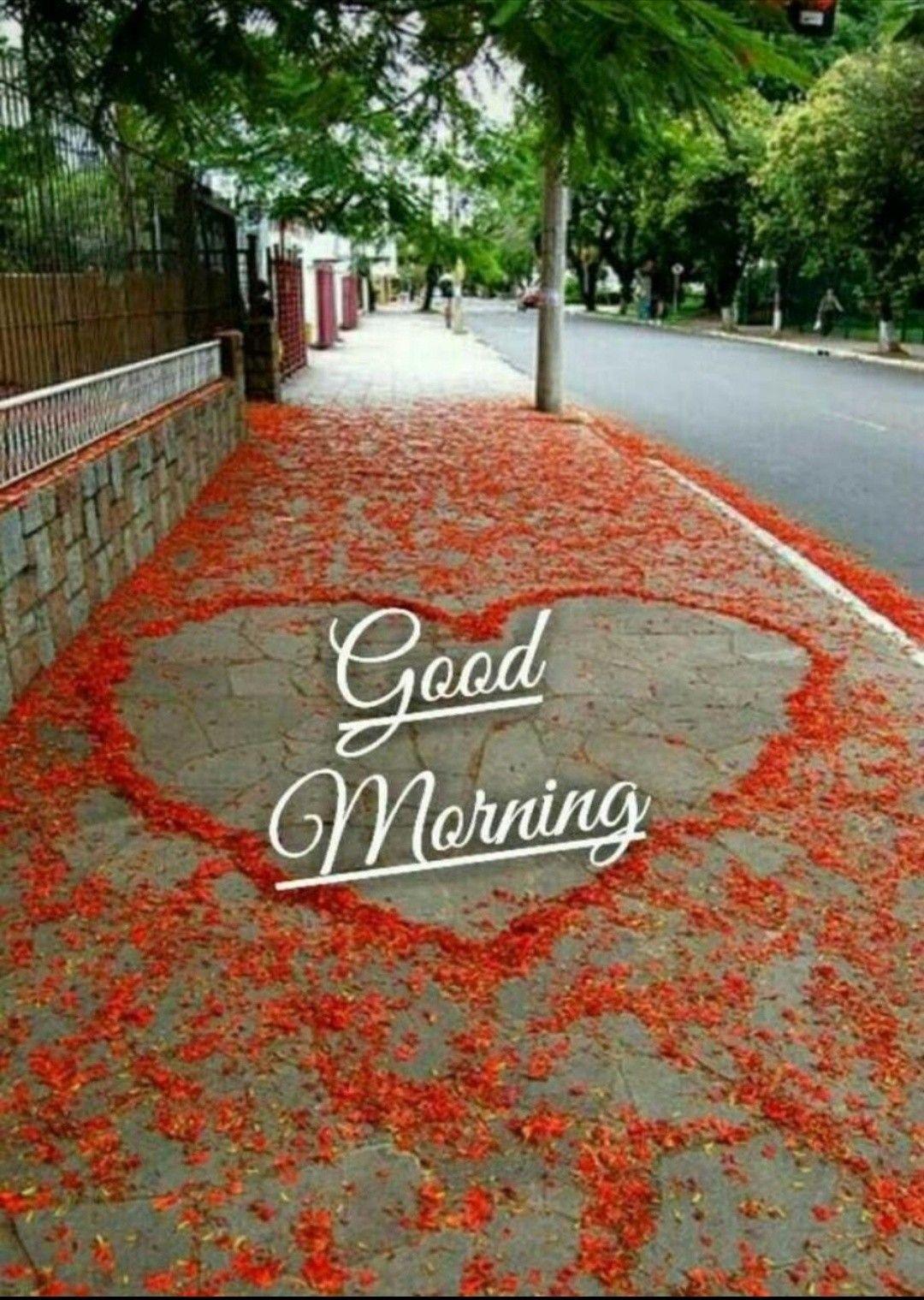 Pin By Meenu Gilhotra On Good Morning Heart In Nature Heart Shaped Rocks Heart Art