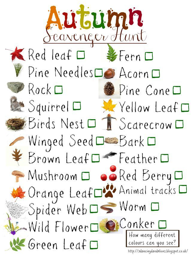 FREE downloadable autumn scavenger hunt check list