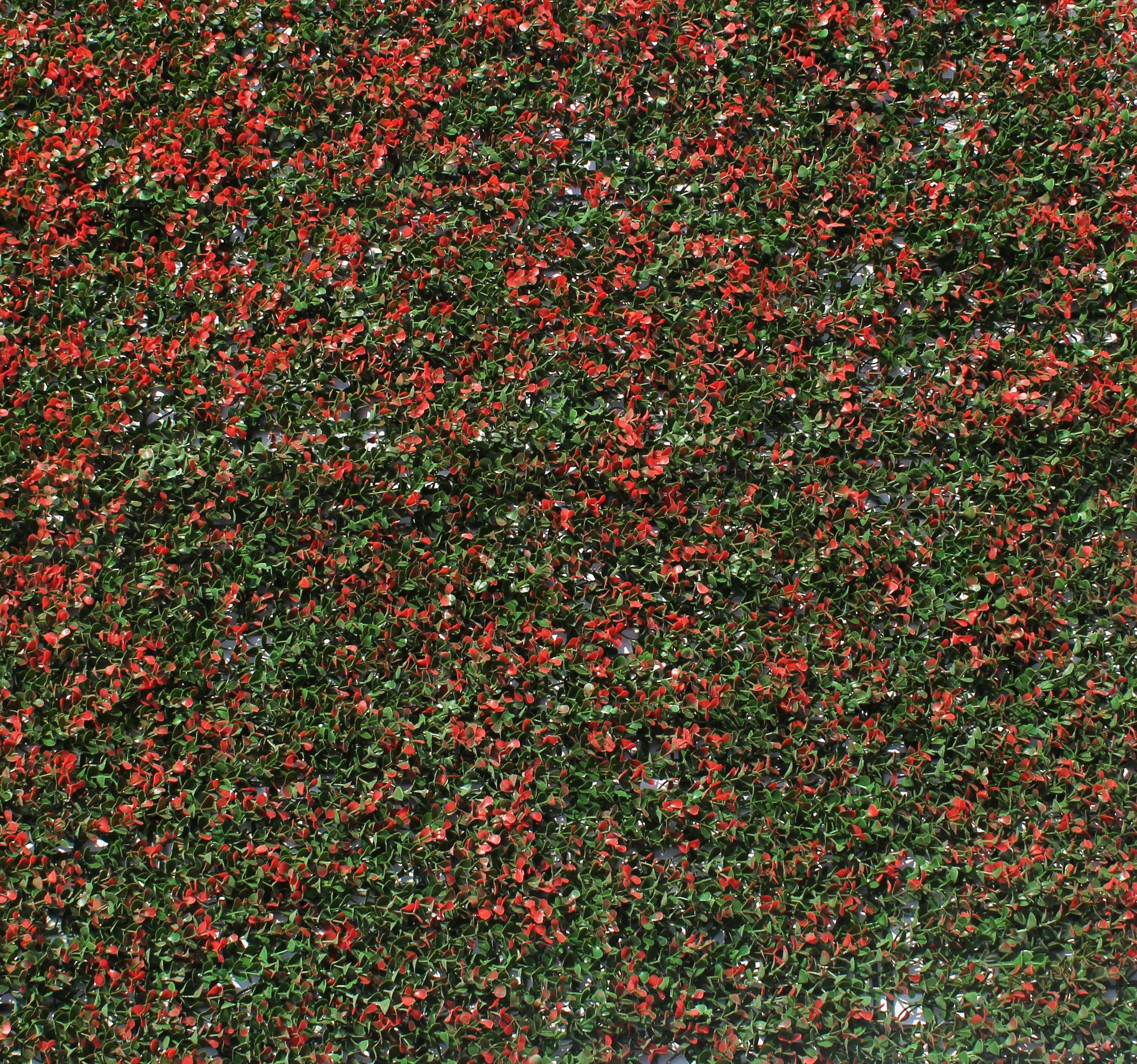 Muros Verdes - Innover - Exteriorismo | Vegetación | Pinterest