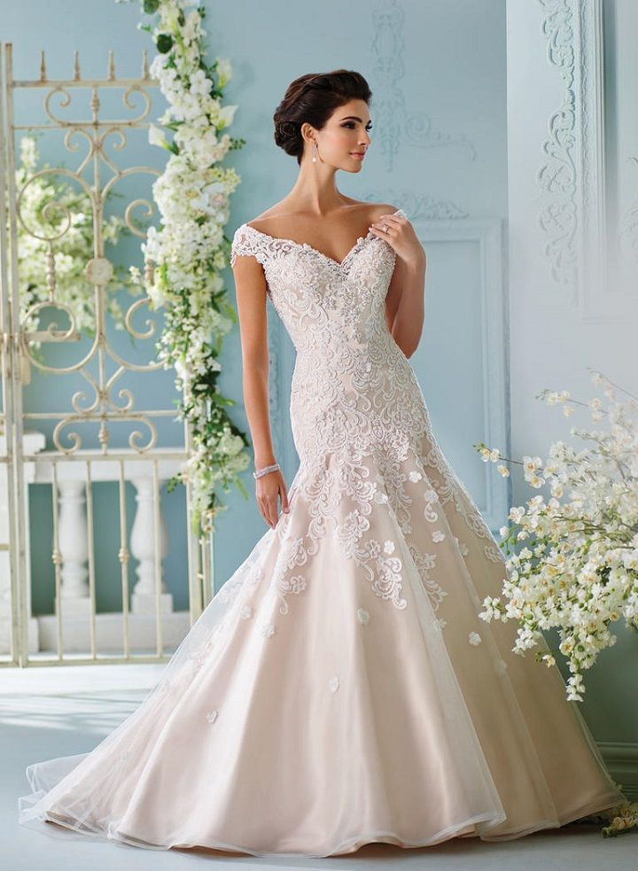 David tutera spring 2017 wedding dresses fairytale for David bridal wedding dresses 2017
