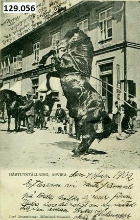 Arvika hästutställning brukt 1902