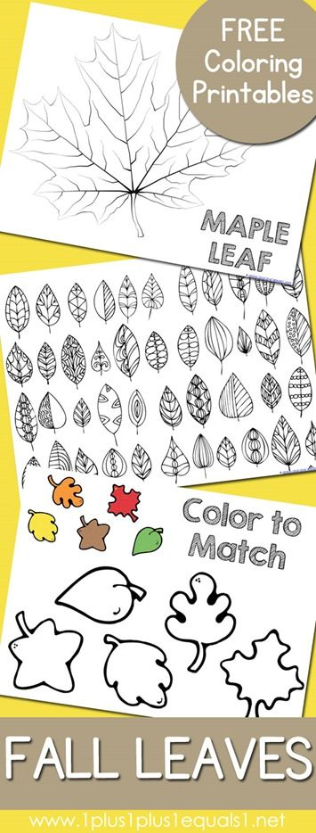Free Fall Leaves and Trees Coloring Pages Fall Theme