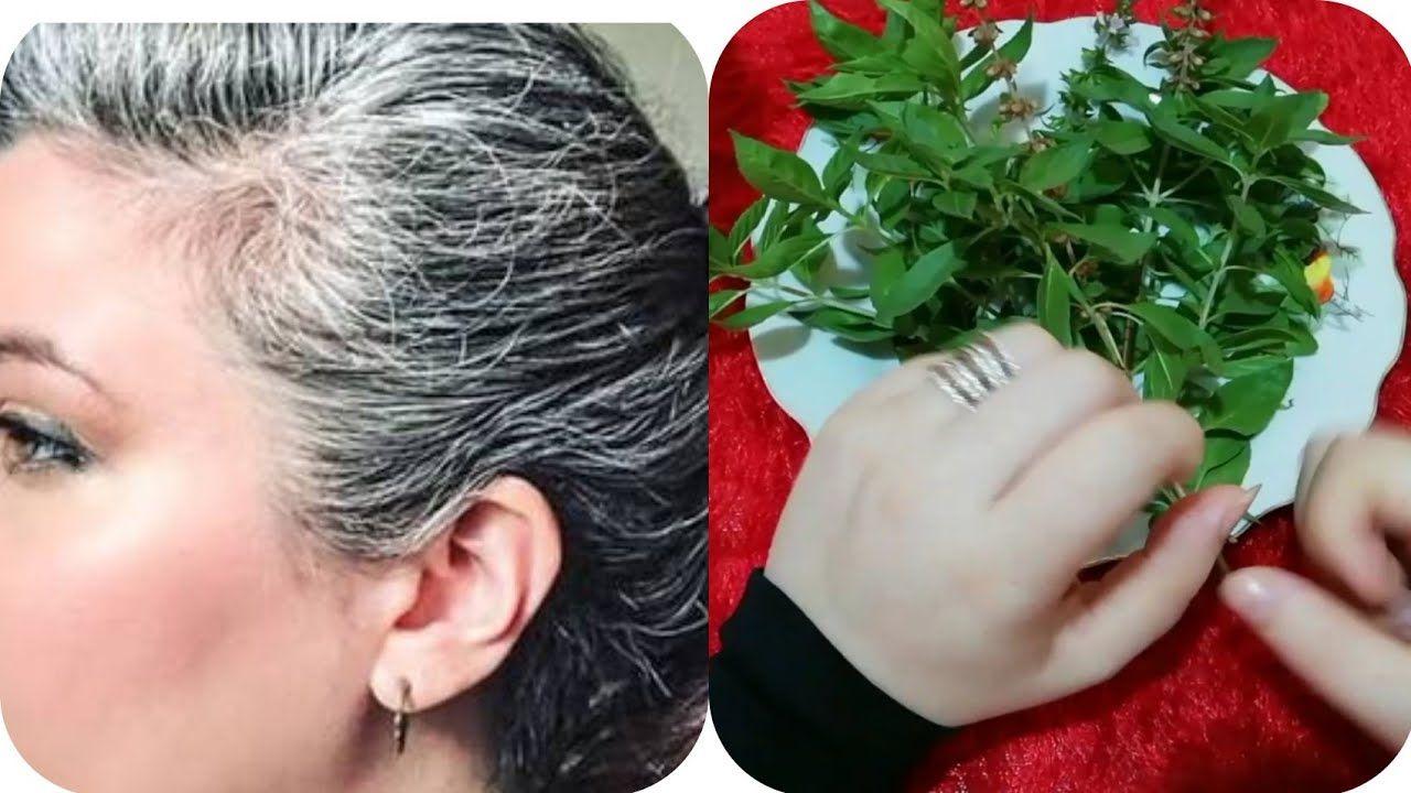 وصفة سحرية مذهلة للتخلص من الشيب او الشعر الابيض بمكونين فقط مجربة ومض Hair Beauty Beautiful Rose Flowers