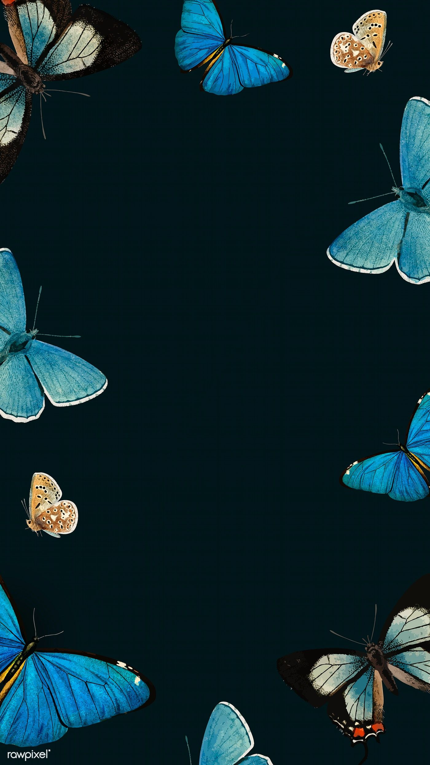 Download Premium Illustration Of Blue Butterflies Patterned On Black Blue Wallpaper Iphone Butterfly Wallpaper Iphone Black Phone Wallpaper