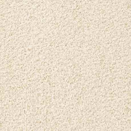 TOWNSEND, WARM LINEN Texture Active Family™ Carpet - STAINMASTER®