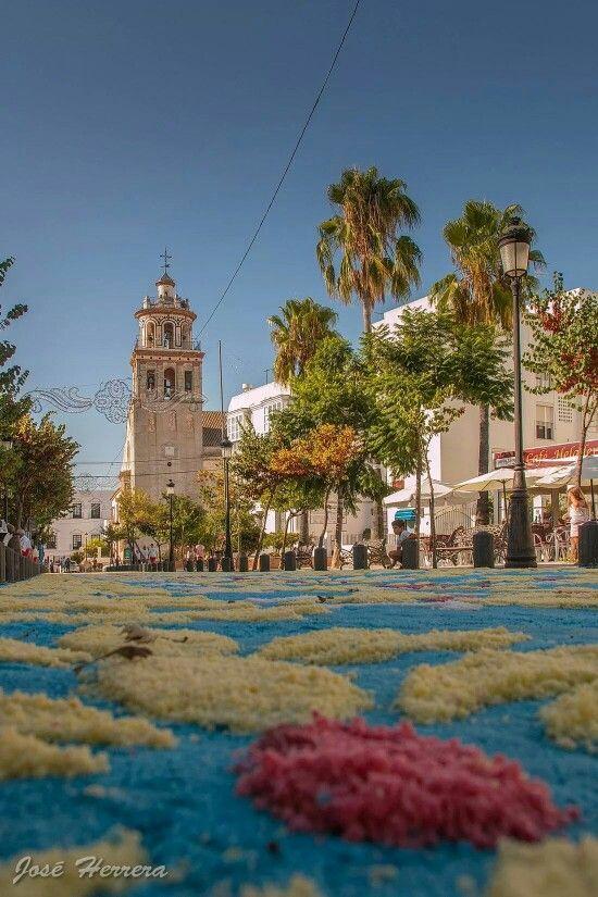 Plaza De La Paz Alfombra De La Virgen De La Caridad 2014 Sanlúcar De Barrameda Cádiz