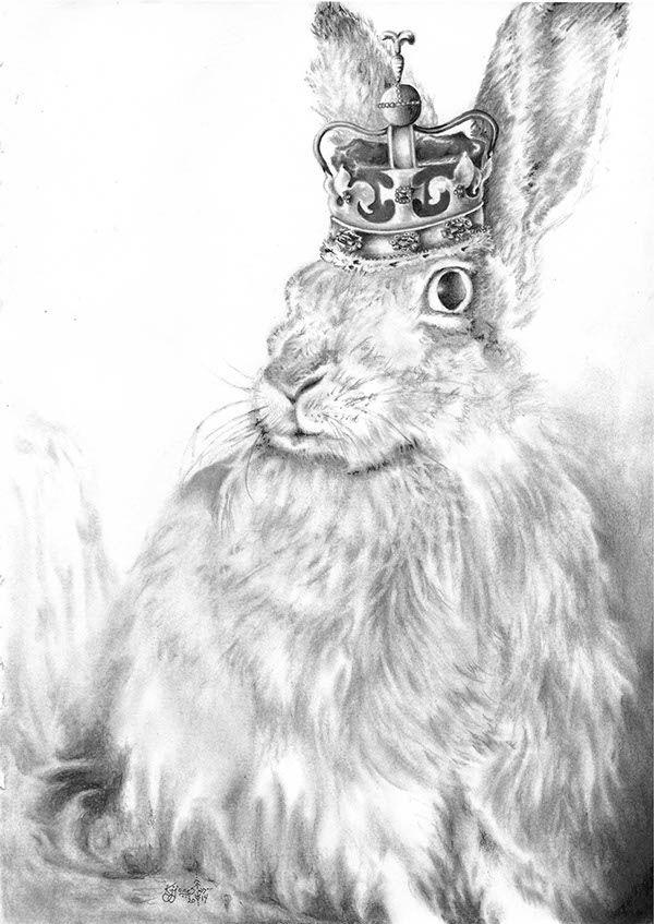 Queen Jack: Portrait of a House Hare  www.KatrynaJones.com