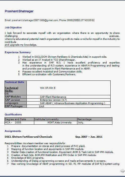 biodata form for job Sample Template Example ofExcellent - programming skills resume