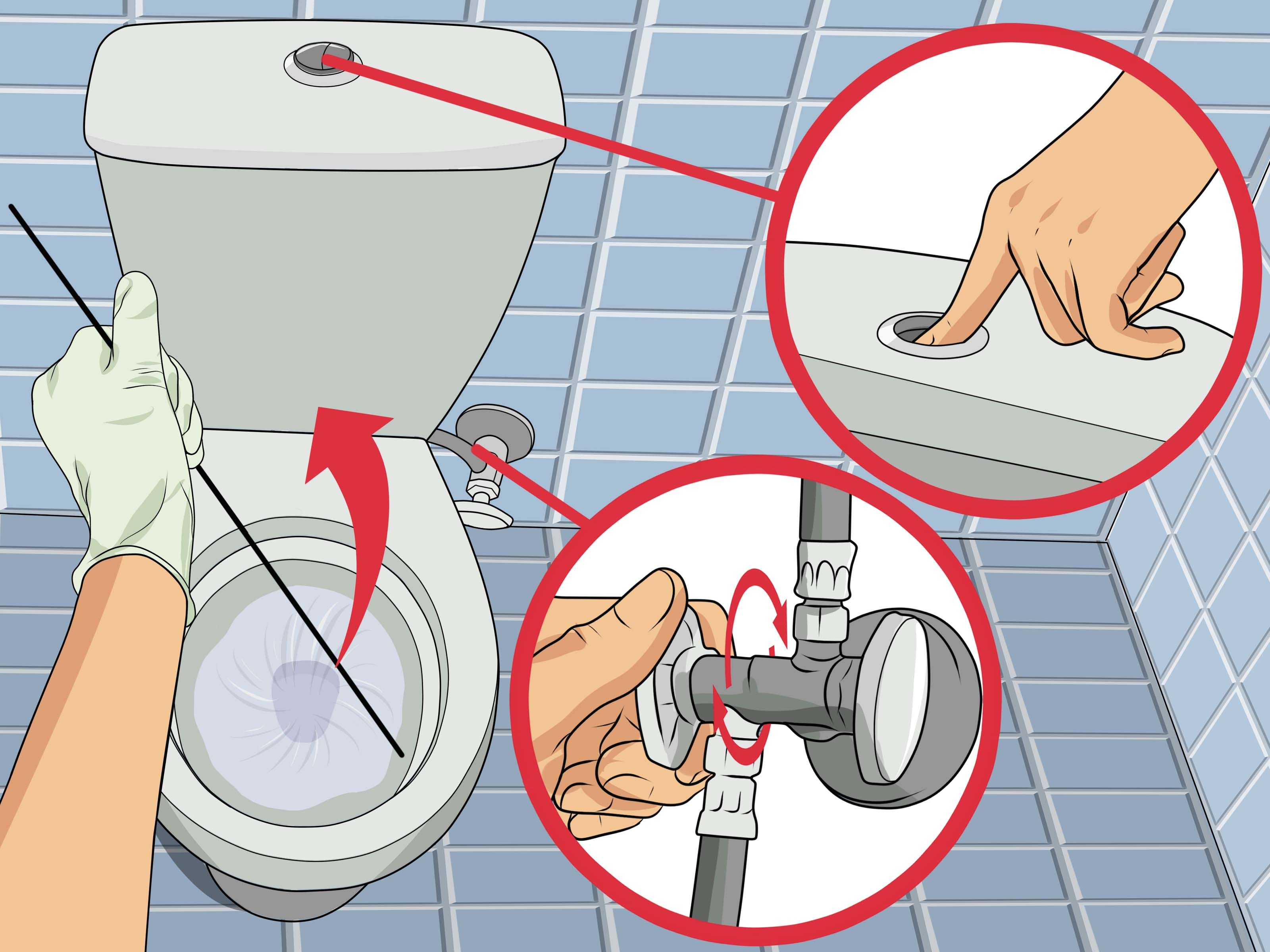 Unclog a Toilet Without a Plunger Clogged toilet, Toilet