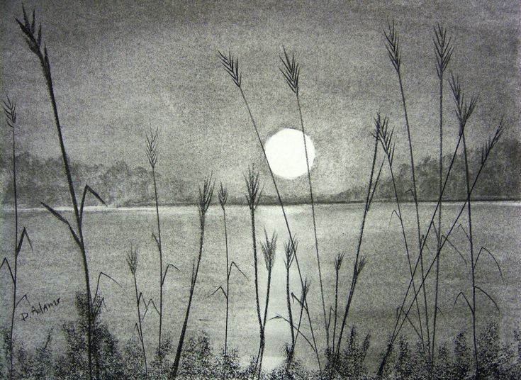 The Sunset Over Pamlico Sound Painting Pencil Drawings Of Nature Landscape Pencil Drawings Pencil Sketches Landscape