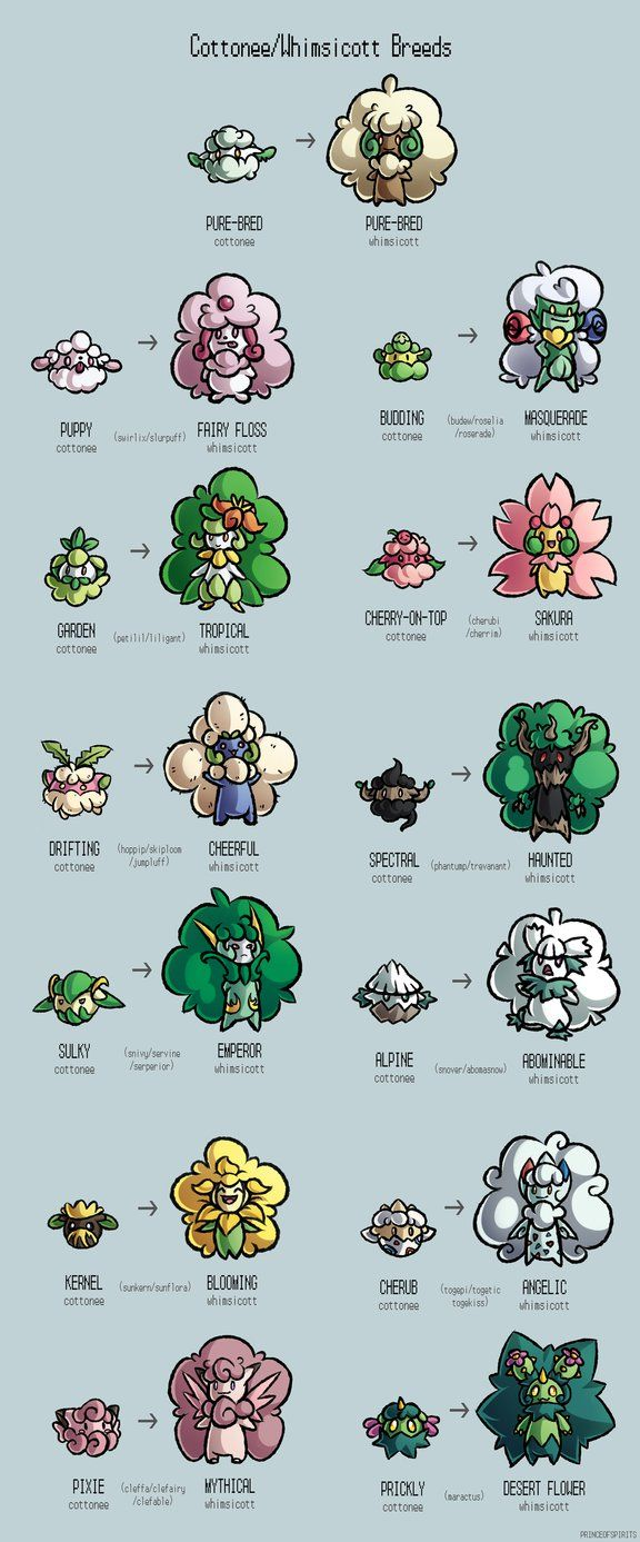 Cottonee Whimsicott Variations By Princeofspirits