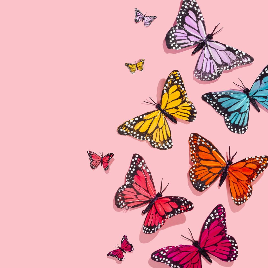Rainbow Of Butterflies Amy Shamblen Art Direction Photography Art Directi Butterfly Wallpaper Iphone Iphone Background Wallpaper Cute Wallpaper Backgrounds