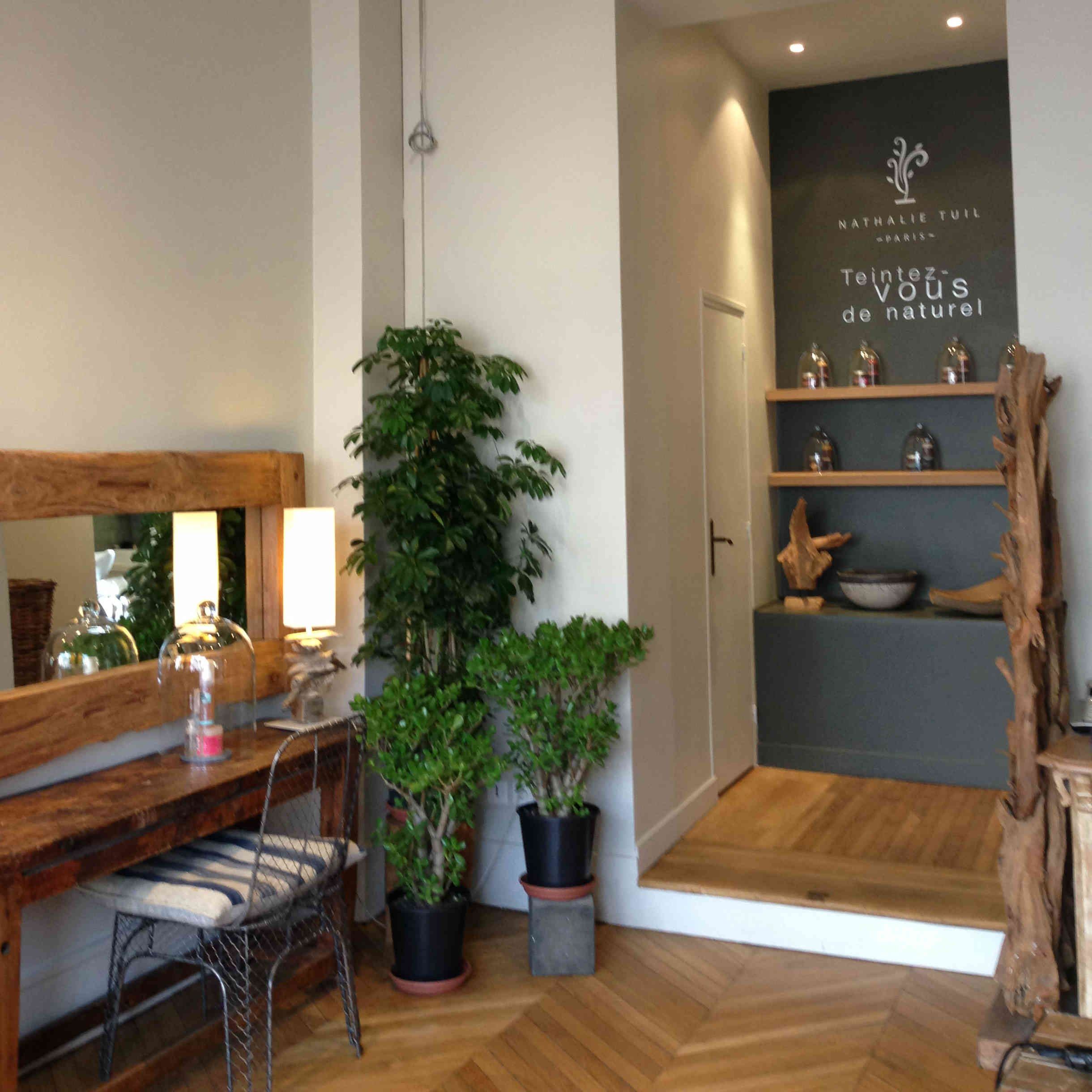 le salon nathalietuil paris soins du cheveu largile bio coloration vgtale coupe sec efficace fengshui chaleureux efficace et zen - France In Paris Coloration Vgtale