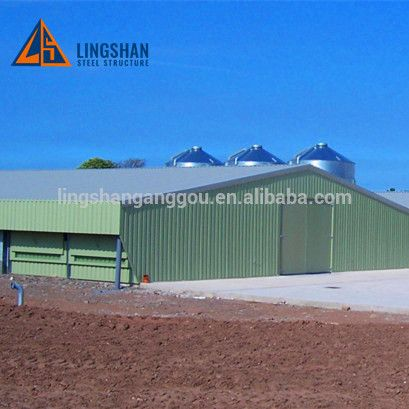 New Design Low Cost Steel Building Poultry Chicken Shed Supplier Steel Buildings Chicken Shed Steel Structure