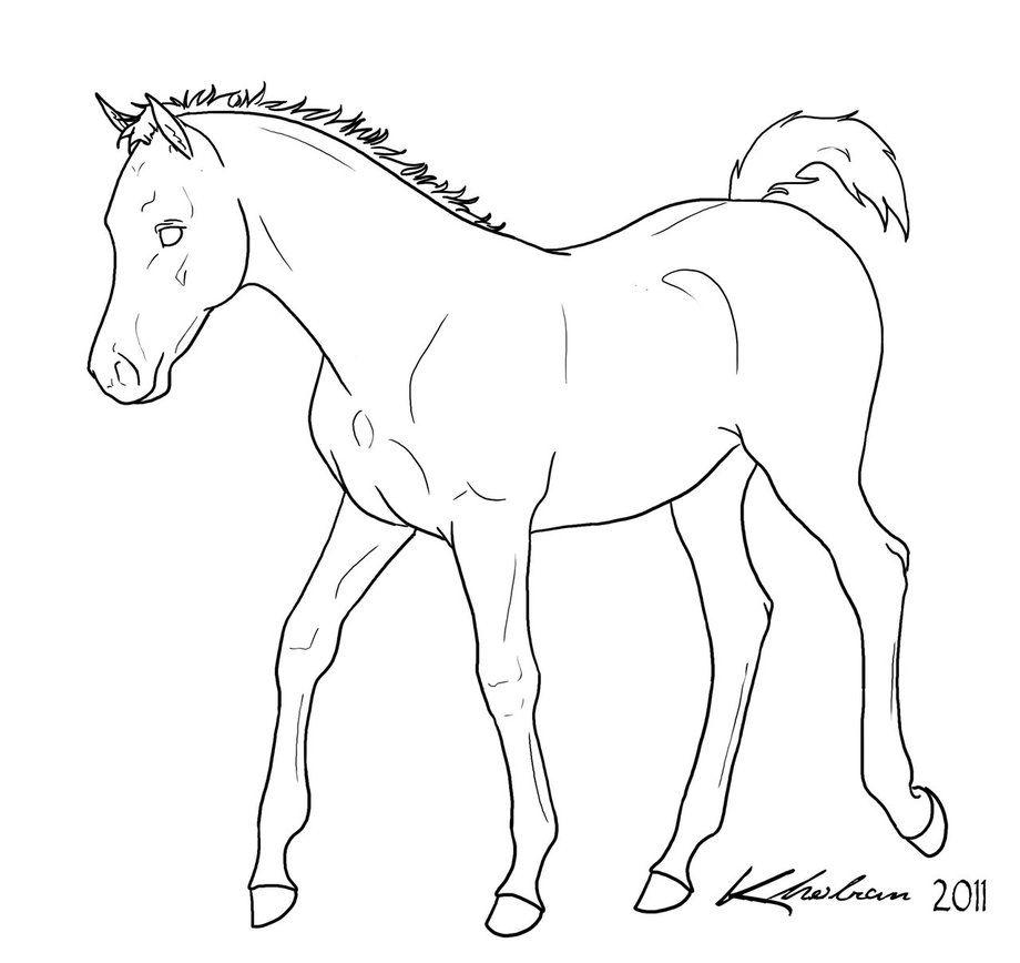 gaited horse lineart Google Search Libros para