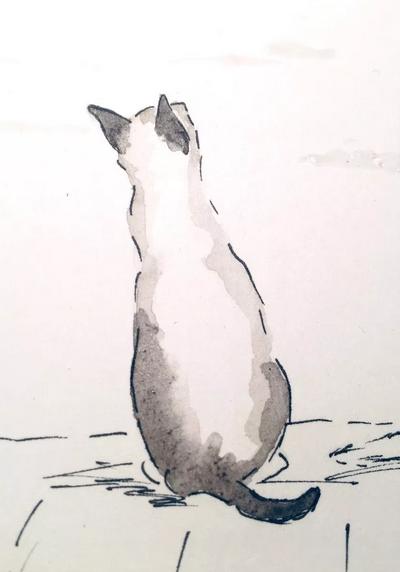 Katze Illustration Es geht ganz einfach!