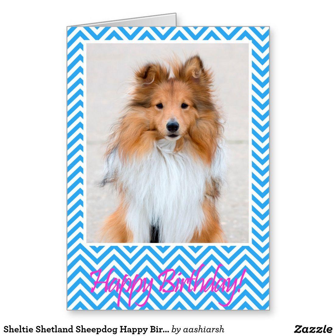 Sheltie Shetland Sheepdog Happy Birthday Card Blue Shetland