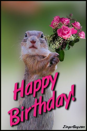 Happy Birthday Cute Meme ~ Happy birthday cute squirrel with bouquet glitter graphic greeting comment meme or gif