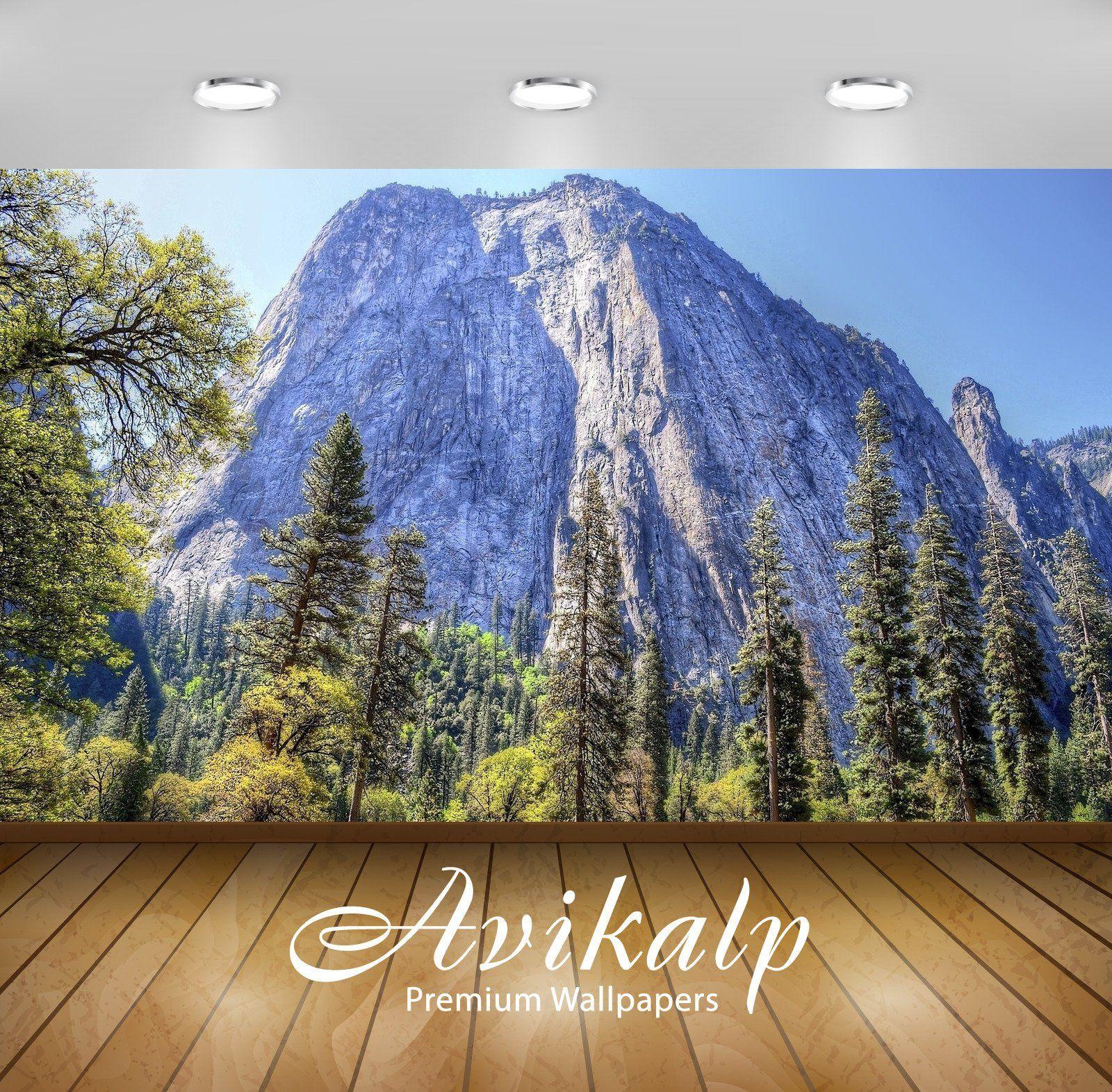 Avikalp Exclusive Awi6765 Yosemite National Park Nature ...