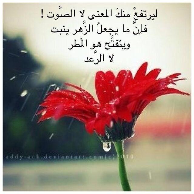 اداب الحوار Words Quotes Arabic Words Words