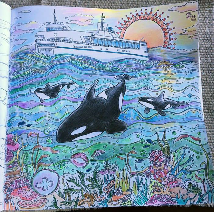 BC Ferries And Orcas By Mary Taylor Lee