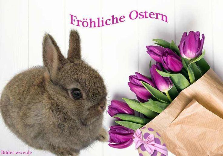 Photo of Osterzweigkränze – Ostern