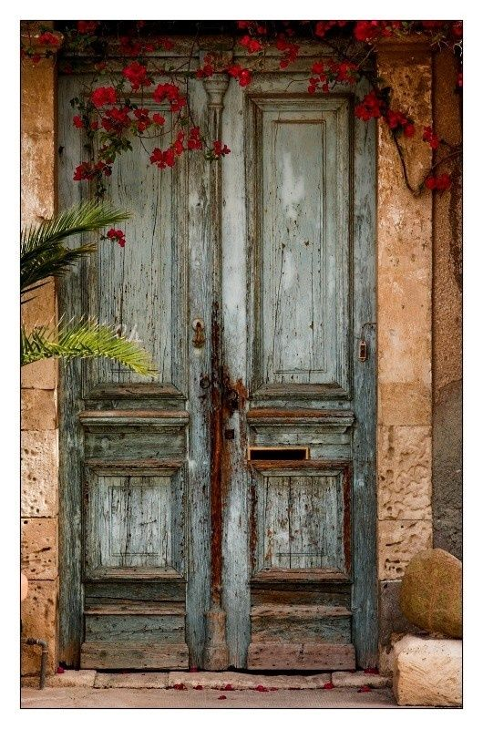 These tall weathered doors look beautiful surrounded by the bright red  flowers. - Would Love A Set. One For My Pantry And One For My Water Closet