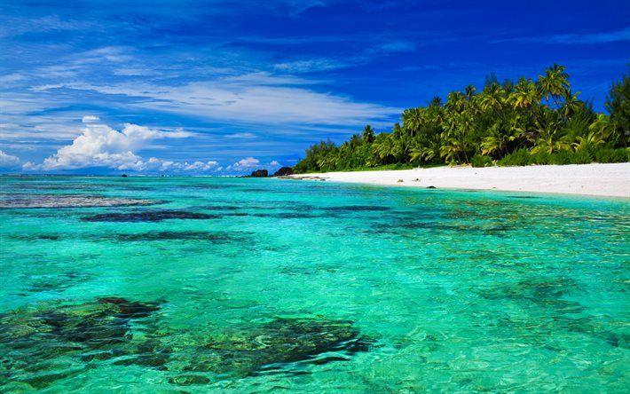 Lataa kuva Trooppinen saari, paratiisi, ranta, ocean, kesällä, loma, aallot