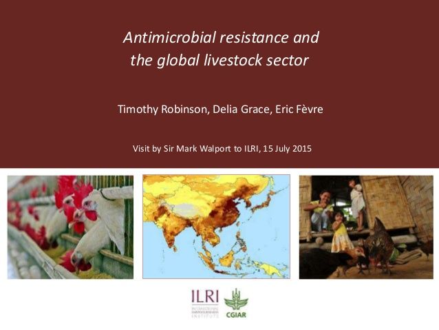Antimicrobial Resistance And The Global Livestock Sector Visit By